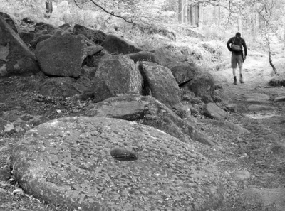 The Walker, Padley Gorge by Lynne McPeake
