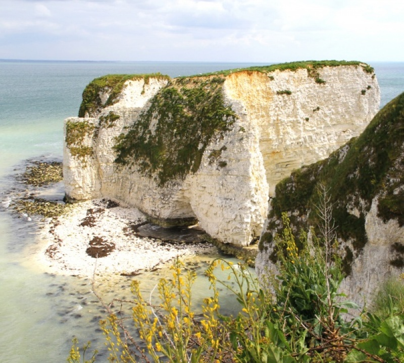 Old Harry Rocks by Howard Bristol