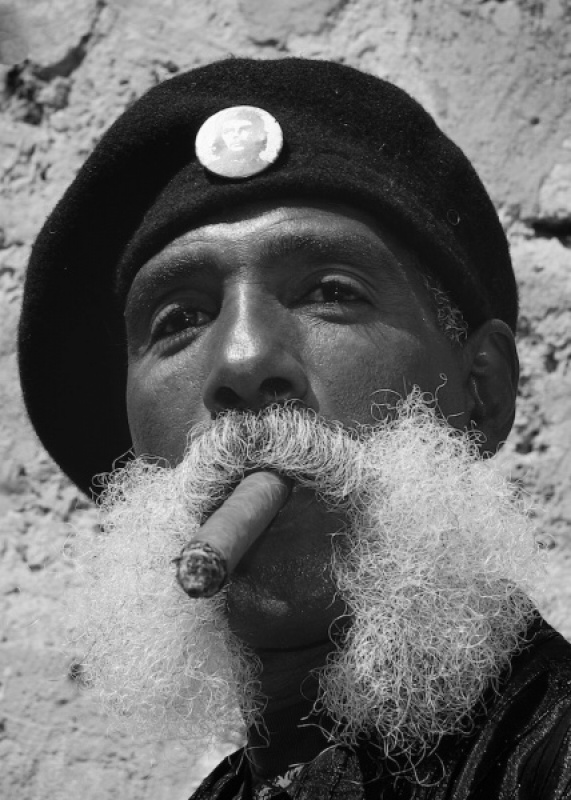 Whiskers & Cigar