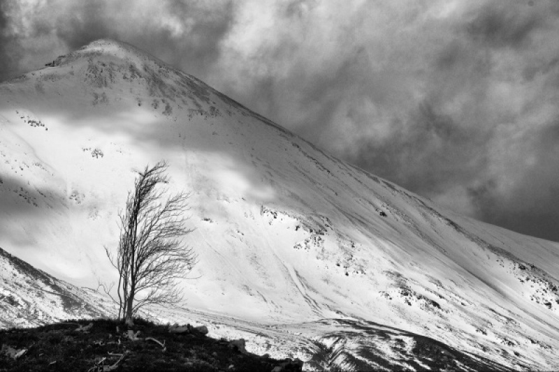 BEINN EIGHE IN WINTER by Margaret Davison