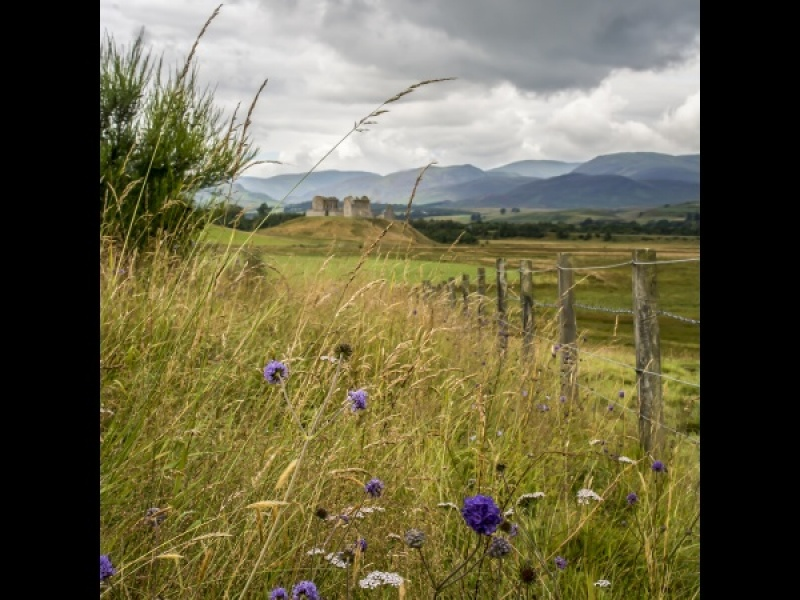 RUTHVEN BARRACKS by DICK BATEMAN