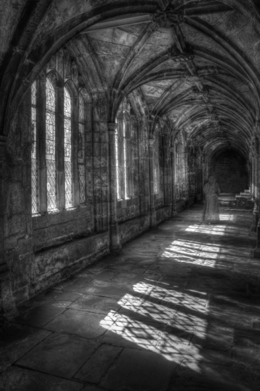CLOISTER by David Blowers