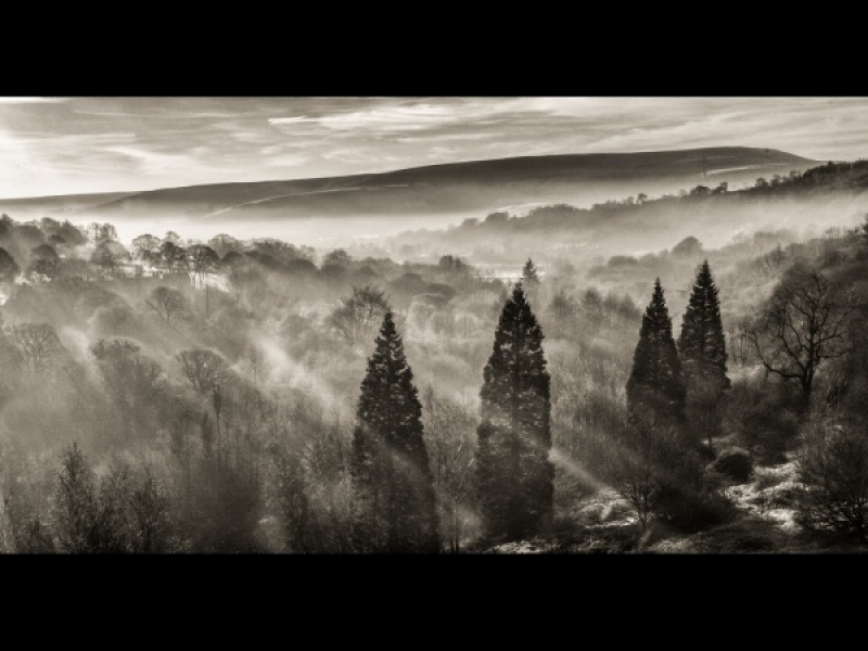 A TOUCH OF MIST by Charlotte Nuttall