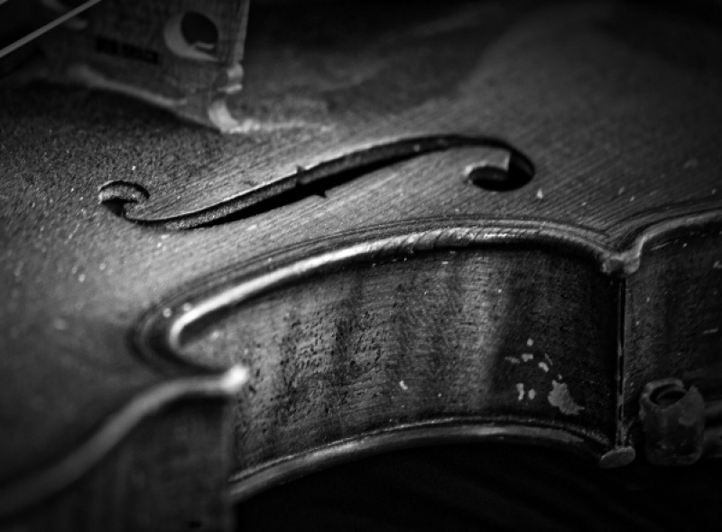 Antique Violin.