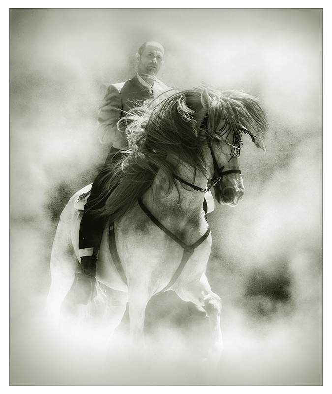 HORSE AND RIDER by Roger Holden