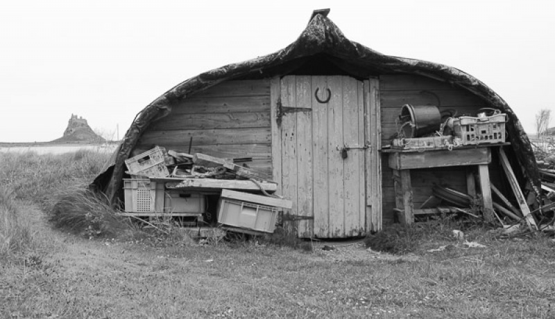 BOAT SHED by Dorothy Challand