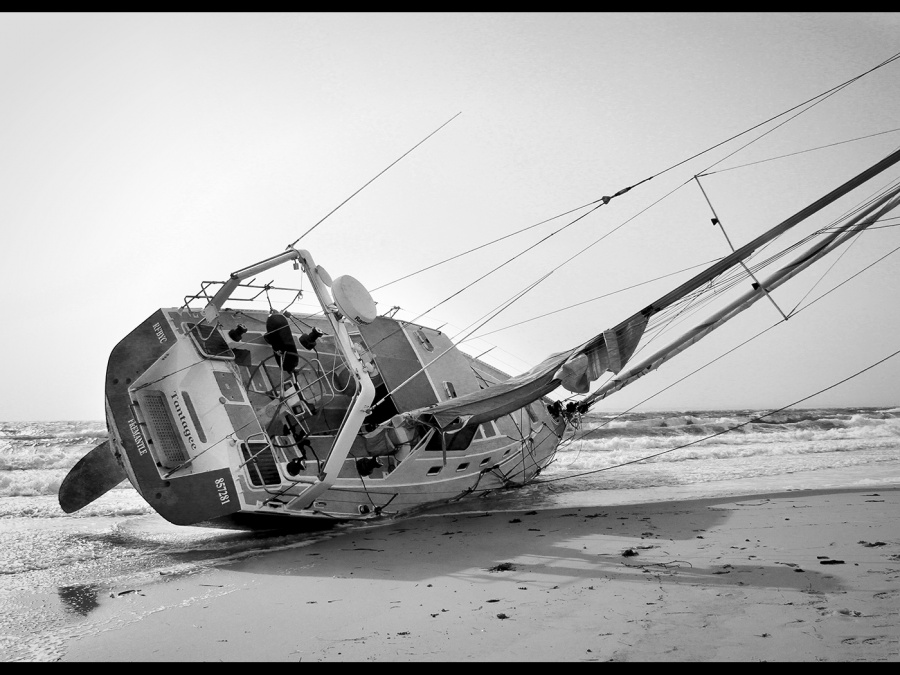DRIVEN ASHORE  by Terry Walker