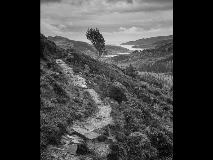FOOTPATH TO THE SEA by Ken Lomas
