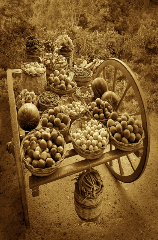 The Harvest by David Blowers