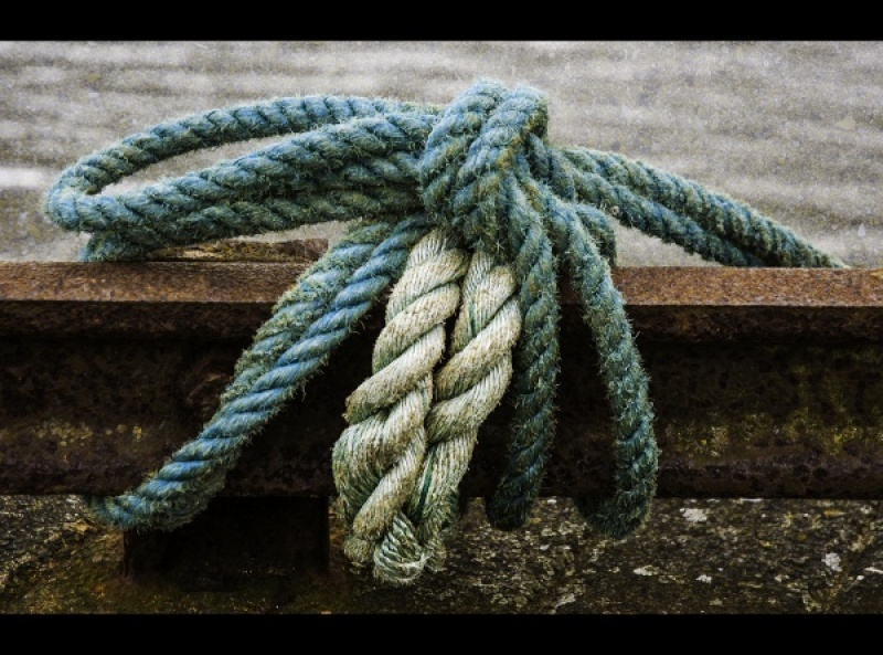 KNOT by Rosy Bateman