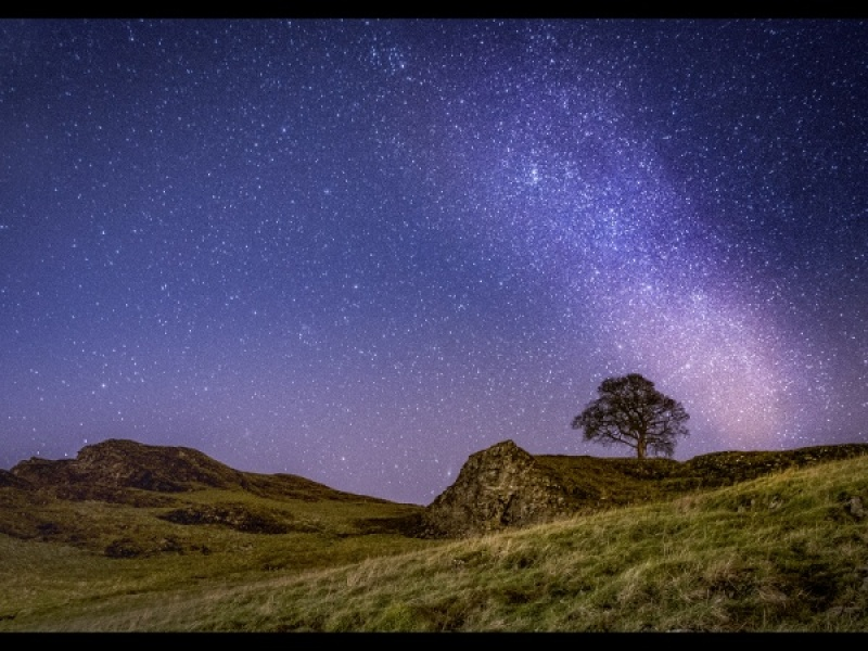 THE STARS ABOVE by Charlotte Nuttall