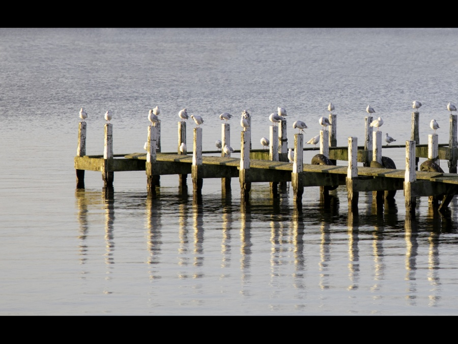 LANDING STAGE by Pete Roberts